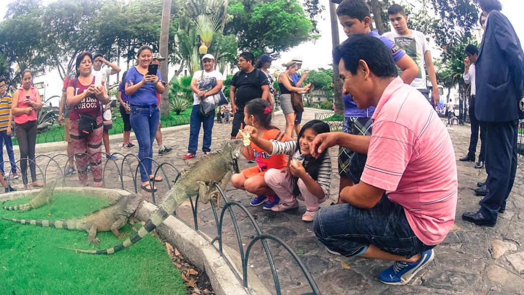 ecuador-guayaquil-parque-de-las-iguanas-ninos